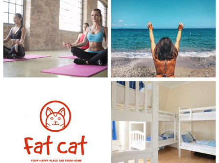 Fat Cat Boutique Hostel